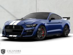 Véhicule Calandre FORD MUSTANG SHELBY GT500