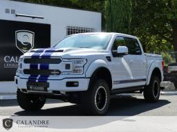 Véhicule Calandre FORD F150 SHELBY OFF-ROAD SUPERCREW